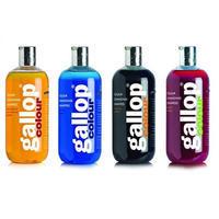 CDM Gallop colour šampon 500ml