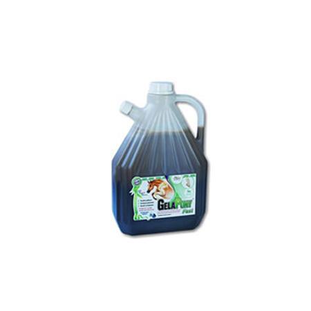 GelaPony Fast Biosol 3l