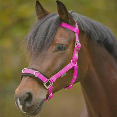 Obnosek lonžovací Waldhausen Nylon Pony růžový