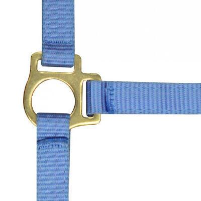 Ohlávka hříběcí Nylon s vodítkem světle modrá
