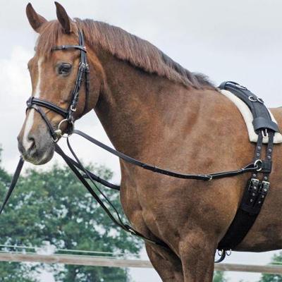 Lonžovací průvlečky Busse Basic  Pony černé